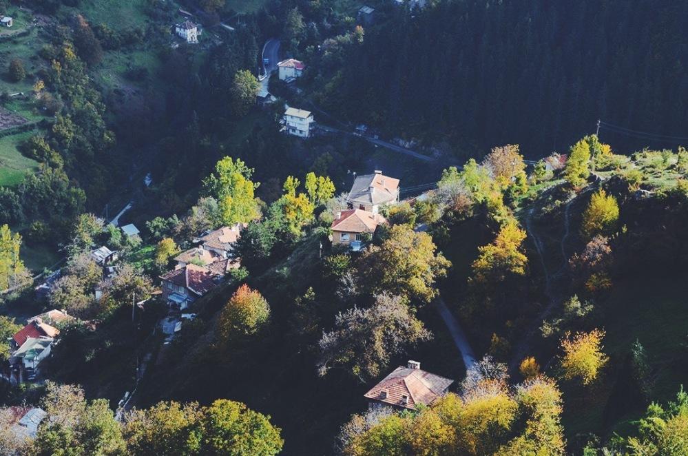 Село Дряново